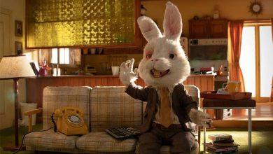 خرگوش رالف را نجات دهید مورد توجه قرار گرفت.