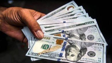دو توصیه مهم به معامله گران دلار